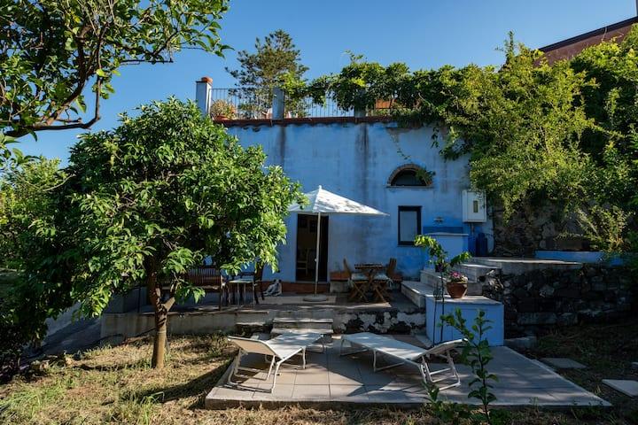 Villa Pippa