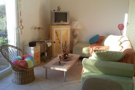 maison meublée à la semaine - Restigné - 独立屋