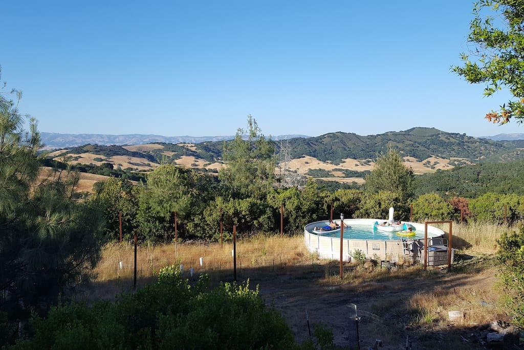 Swimming pool in vineyard