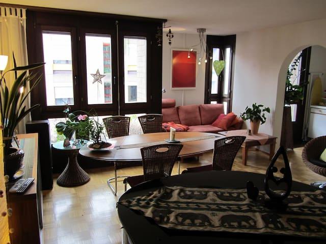 300m from Baselworld: beautiful flat - Basel - Apartment