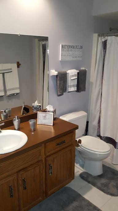 Full bath with shower over tub and wall mounted hair dryer