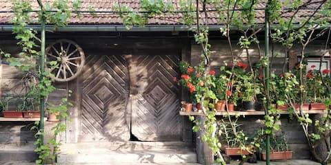 Tatic's garden