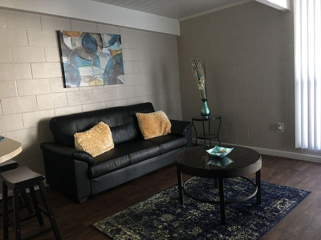 Conveniently Located Apartment home (dp3)