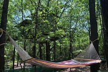 Beautiful view of the Choctaw from the hammock area