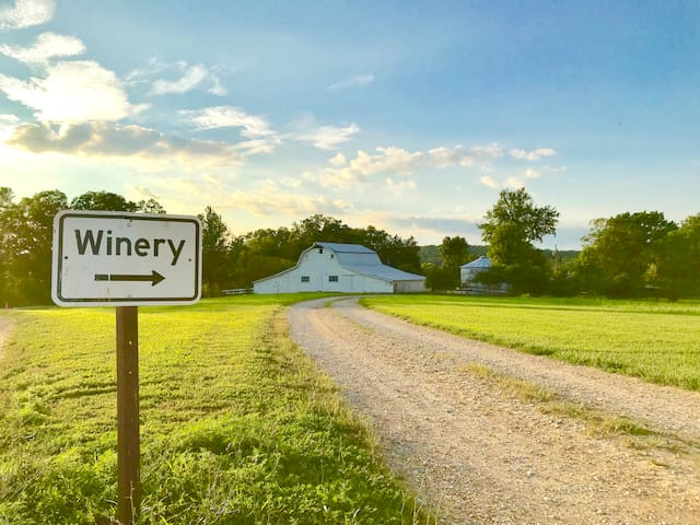 Entrance to Winery (5 min walk from house)