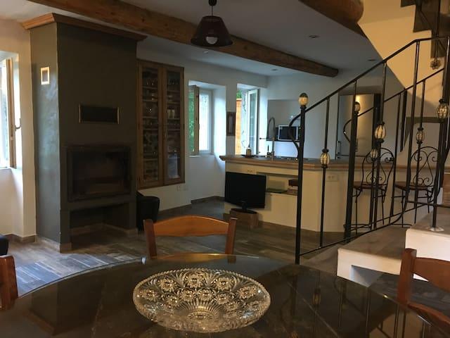 Le Mas Sylva - Saint-Jean-du-Pin - Apartment
