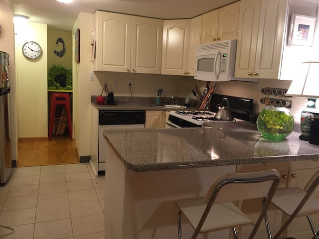 Chef's kitchen with a gas stove, dishwasher, microwave, garbage disposal and lots of counter space. Meet our fish Yves!