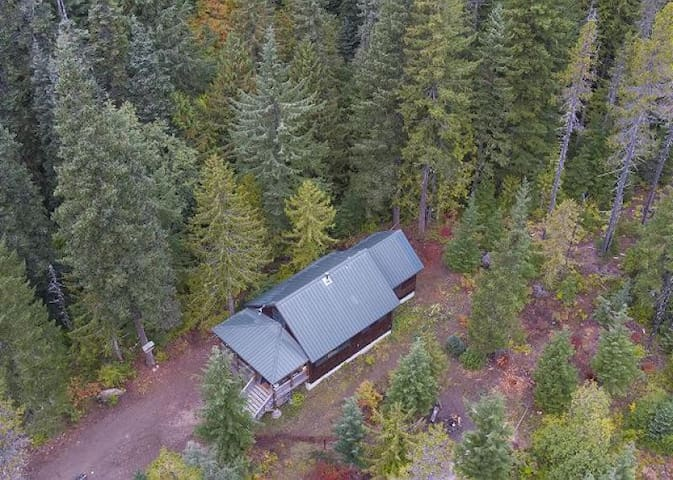 Hike, bike and paddle near the dog-friendly Marshall Cabin, deck, BBQ