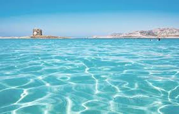 Sardegna Last Minute - Bancali - บ้าน