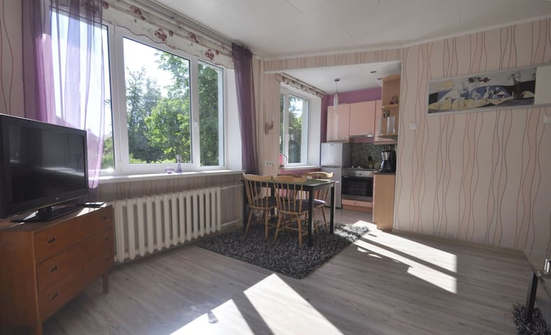 Комната с встроенной кухней