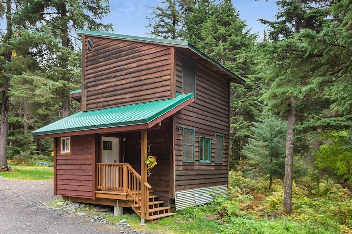 Quaint cabin with modern amenities located close to ski slopes!