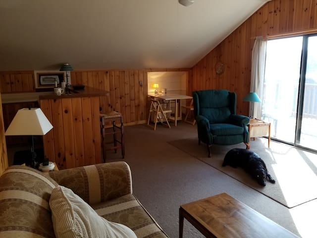 Barb's Lakeside Loft on Kiwassa, Saranac Lake NY