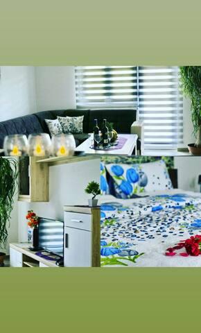 Apartments Pravica