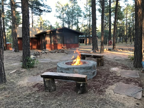 Wild Saddle Cabin-Our gate opens to the forest!!!