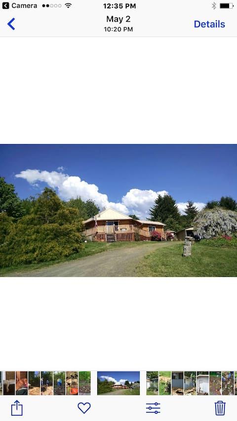Beautiful Log Home on Hillside