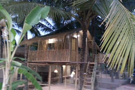 4 OmGravity Eco Tree Bamboo Hut - Canacona