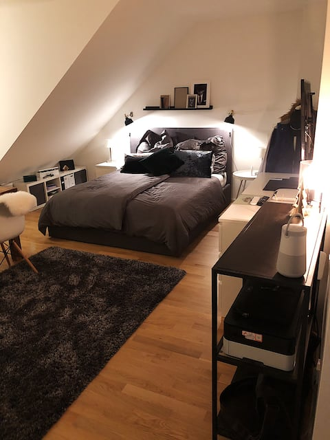 Stylisches Apartment in Kölner Südstadt