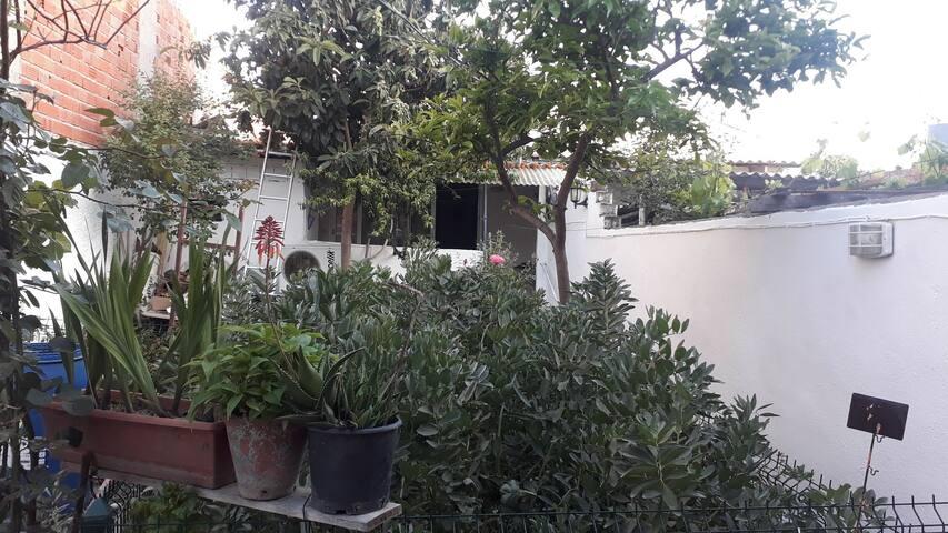 Çandarlı 2+1 bahçe içi ev
