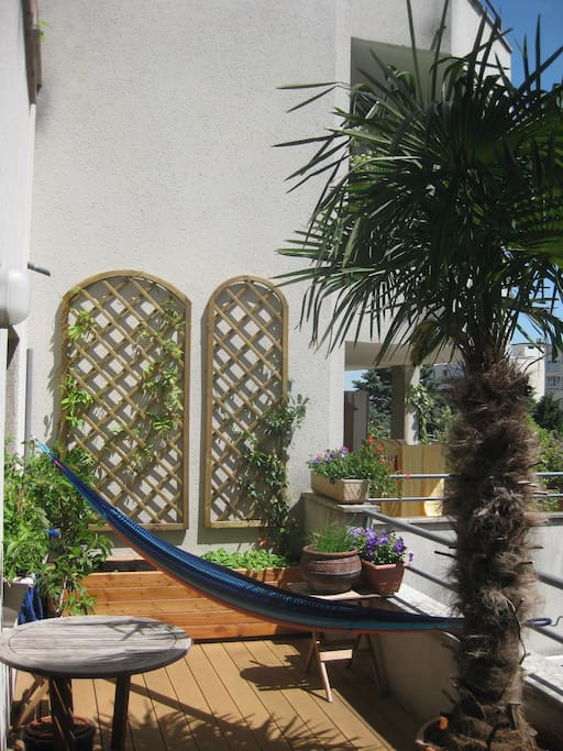 terrace (12 m2) with hammock