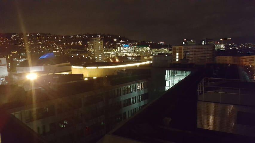 Apartment In Stuttgart Mitte 2 Pers