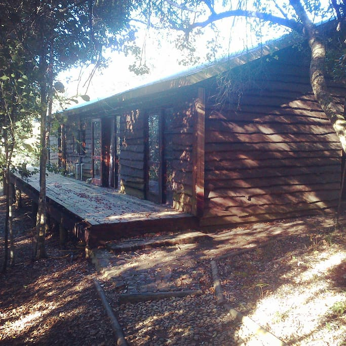 Wooden cabin in the middle of the indigenous forest