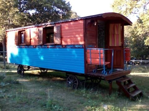 Beautiful Gypsy trailer under the oaks.