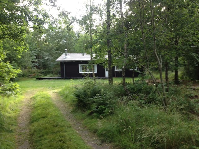Rig natur i Svinkløv nær MTB, Hærvej og badehotel