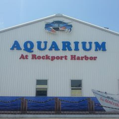 Aquarium at the Harbor minutes from the house wiped out by Harvey