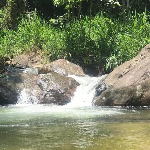 Chalé da floresta em sitio beira-rio petfriendly