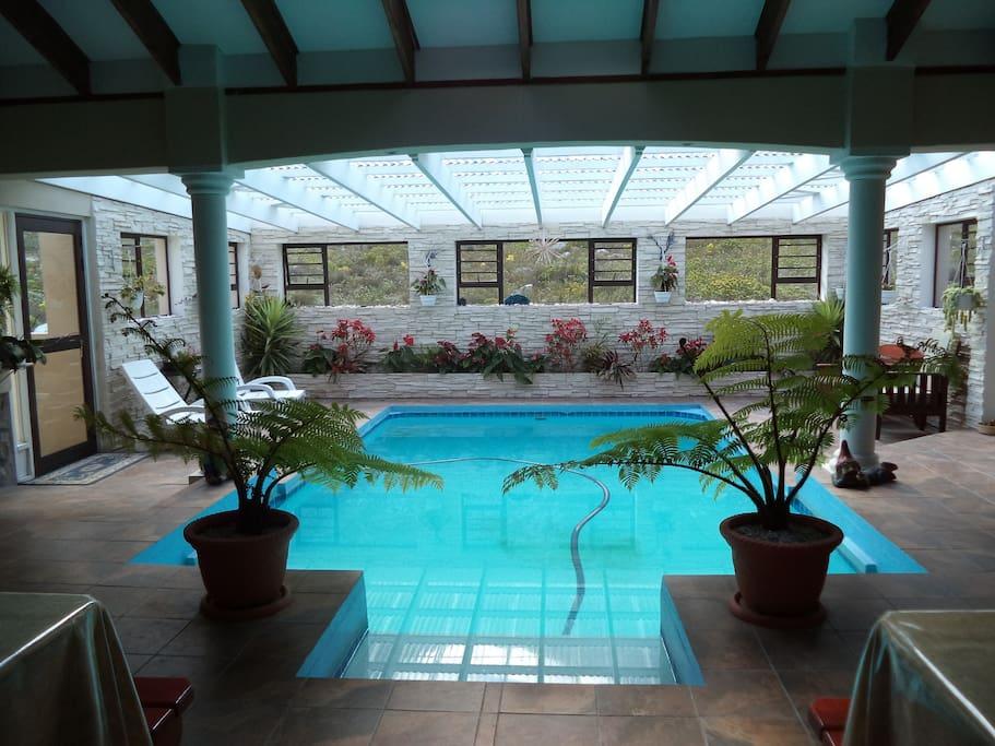 Inhouse swimming pool with braai area