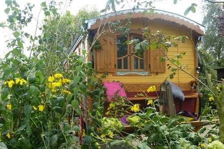 Schooteindhoeve: Exclusieve woonwagen met wellness - Vlierden