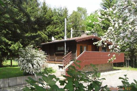 Ruhiges Ferienhaus am Waldrand  Wellness Natur pur - Mudau