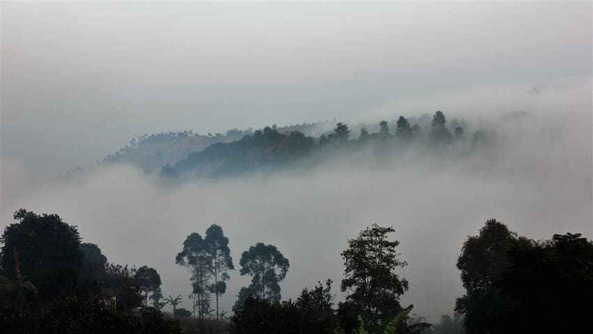 Serene Hill, A Luxury Family Villa - Lembang