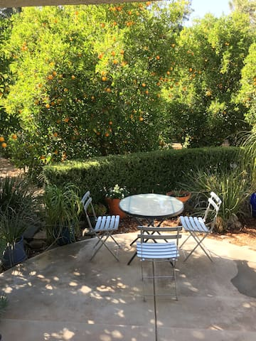 Private patio herb garden:  Relax & watch the many hummingbirds fly around the orange grove.  Enjoy your meals in serenity, watching mountain peaks.