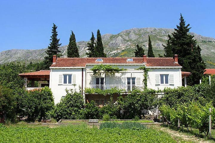 Two bedroom apartment with terrace Srebreno, Dubrovnik (A-9028-a) - Kupari - Daire