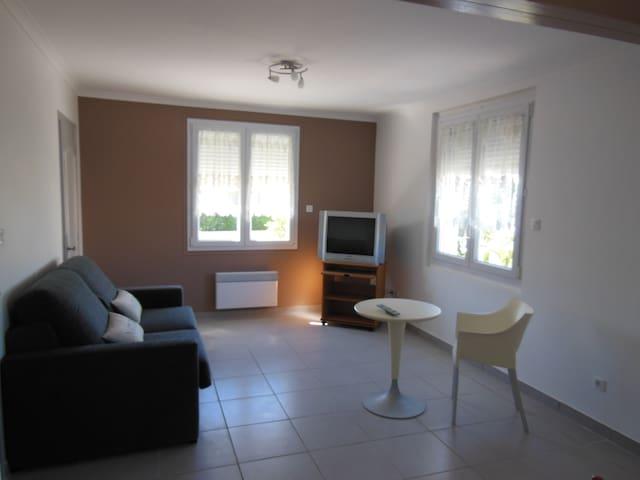 Salon - canapé lit - télé écran plat