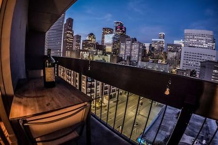 High Rise Downtown Houston Cheap! - Apartment