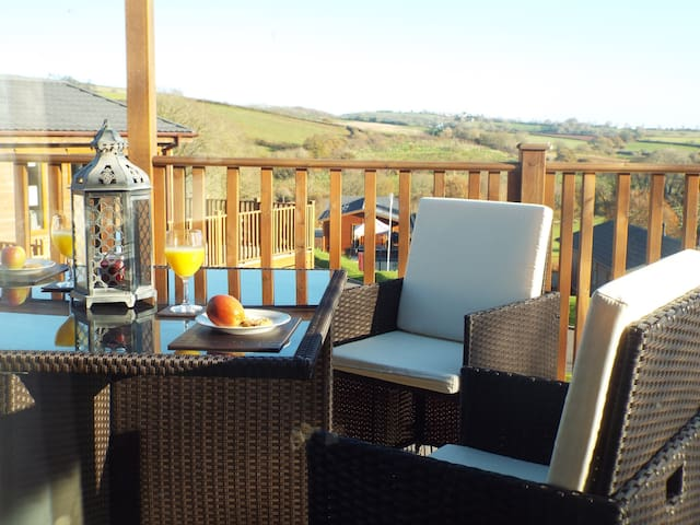 Devon Hills 2 4 6 berth holiday lodge c/w hot tub