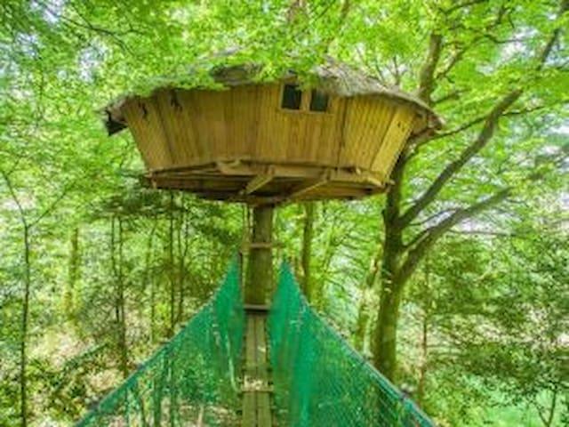 Glamping Tree house Ben Nevis Treuscoat