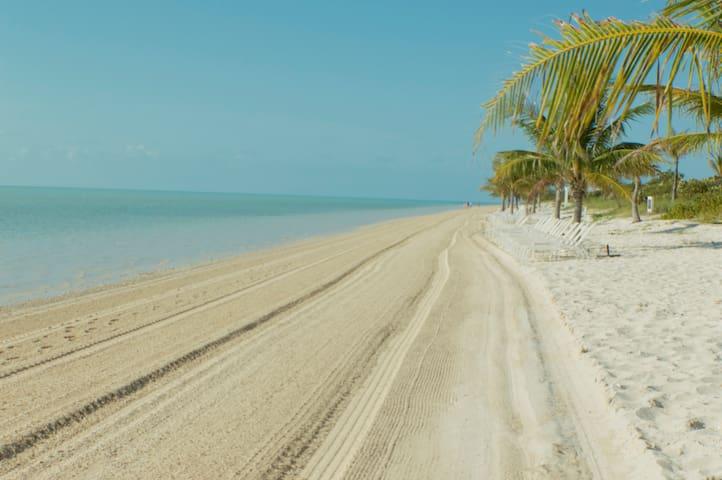 STARFISH Residence - Beach
