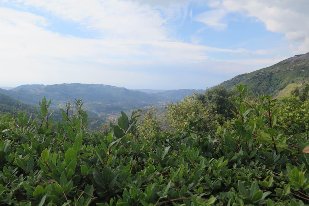 Panorama da Gombitelli