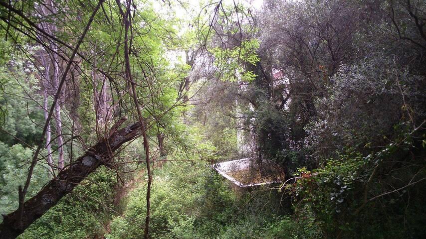 El Molino el Inglés, visto desde el puente colgante