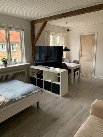 Bright and cozy apartment near Copenhagen