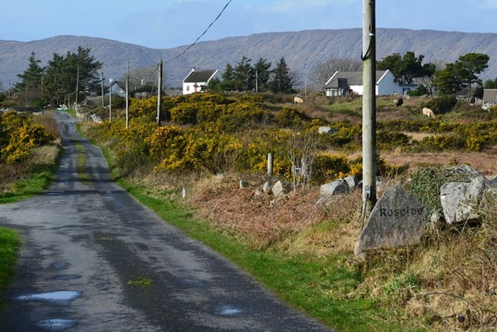 Thatched Cottage in Connemara (upstairs room) - Galway - Casa