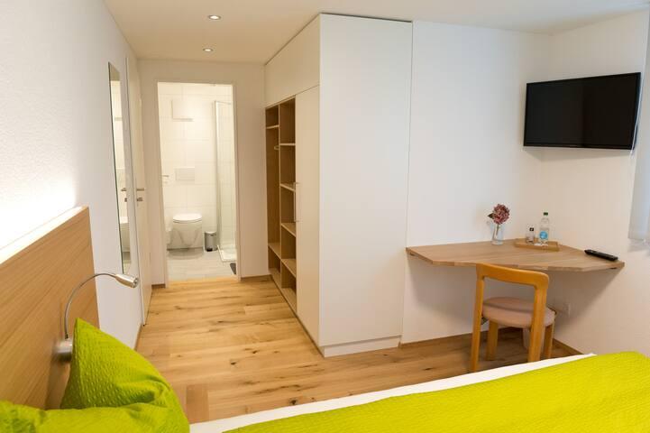 Zimmer Hof mit Garderobe, Arbeitsplatz und TV