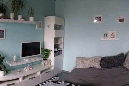Cozy apartment near Brno-the exhibition area - Rosice - 一軒家