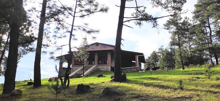 Habitación en hermosa cabaña en el bosque
