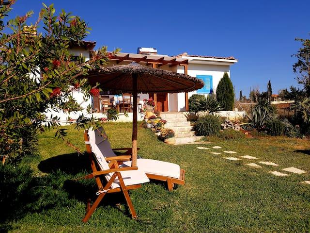 Seaside villa-Halkidiki - Private garden