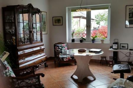 Nice and quiet - Tiszabábolna - Huis