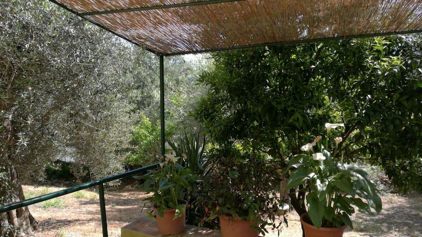 Casa Vacanze in Maremma - Caldana - Ev